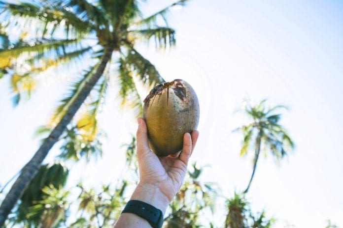 coconut-water:-amazing-alternative-to-sugary-sports-drinks